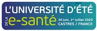 Université d'été de la e-santé de Castres